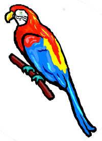 Bavard, le perroquet