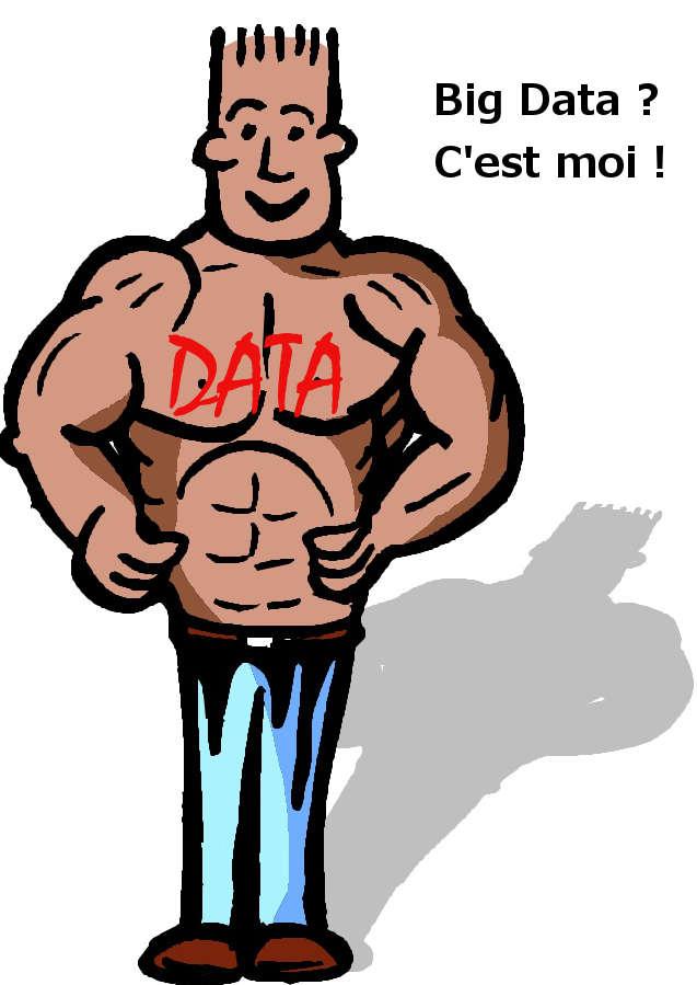 big data décisionnel