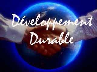 Développement Durable : La terre dans le cerveau