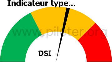 Exemple d'indicateur DSI