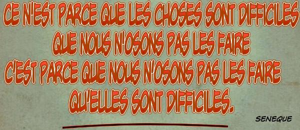 citation de Seneque Ce n'est pas parce que les choses sont difficiles que nous n'osons pas les faire, mais c'est parce que nous n'osons pas les faire qu'elles sont difficiles.