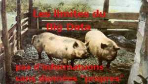 Quelles sont les limites du Big Data et de l'Analytique?